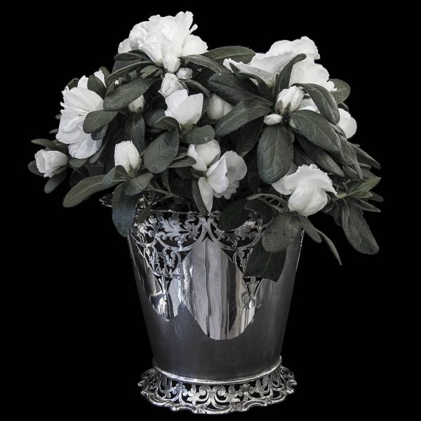 Antique Edwardian English Silver Jardiniere